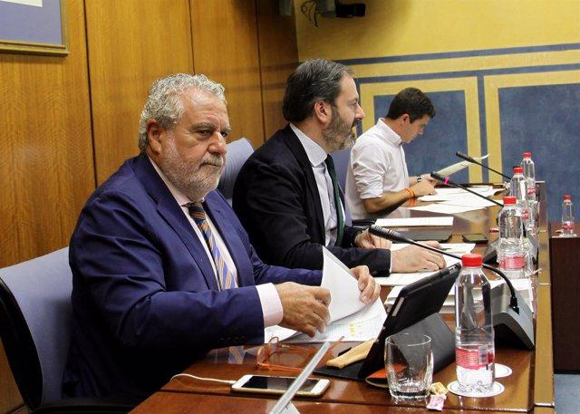 El subdirector general de RTVA, Joaquín Durán, en comisión
