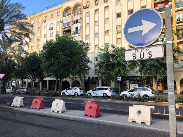 Una de las avenidas de Alcalá de Guadaíra (Sevilla)