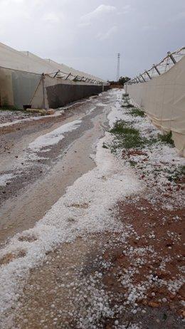 Invernaderos dañados por una tormenta de granizo