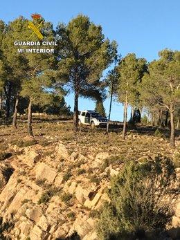 La Guardia Civil ha localizado a 4 personas perdidas al recolectar setas
