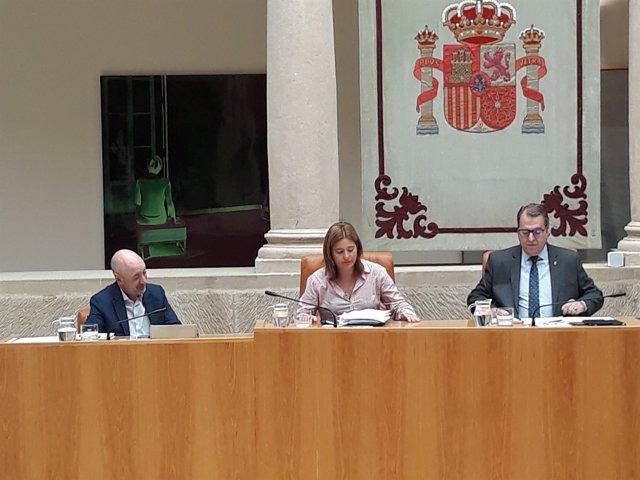 Noemí Manzanos nueva secretaria primera de la Mesa del Parlamento