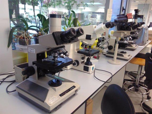 Laboratorio del Hospital Vall d'Hebron de Barcelona