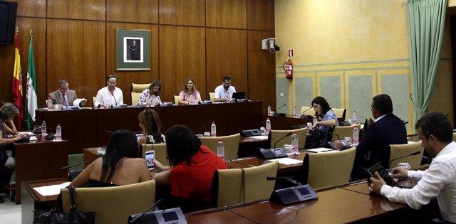 Comparecencia del consejero de Fomento, Felipe López, en comisión parlamentaria