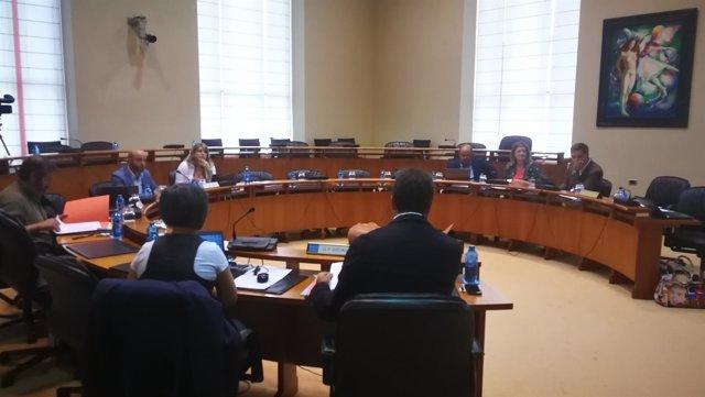 Comisión institucional del Parlamento de Galicia