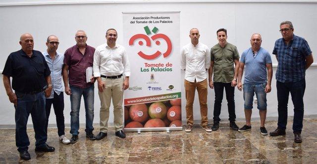 Presentación de la campaña del tomate