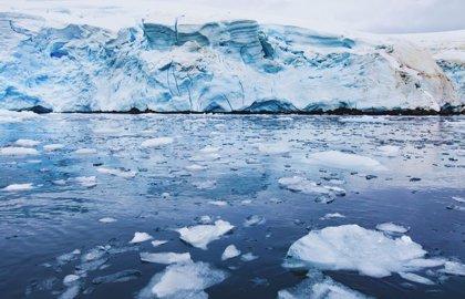 ONG de todo el mundo se manifestarán el sábado para exigir a los Gobiernos un planeta libre de combustibles fósiles