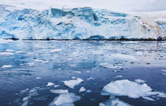 Detalle del Ártico