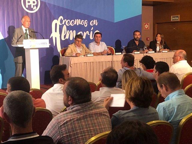 Amat (PP) interviene ante la junta directiva provincial