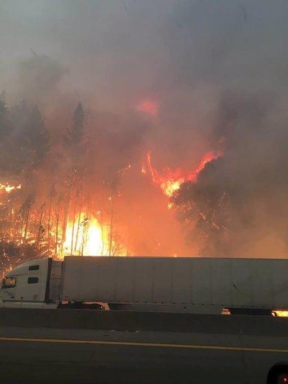 Un incendio forestal en el norte de California provoca la evacuación de decenas de personas