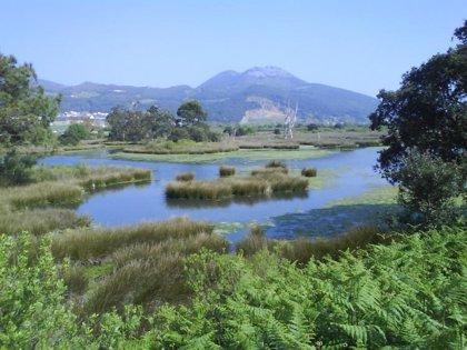 El nuevo PORN de las Marismas de Santoña amplía el parque en 110 hectáreas