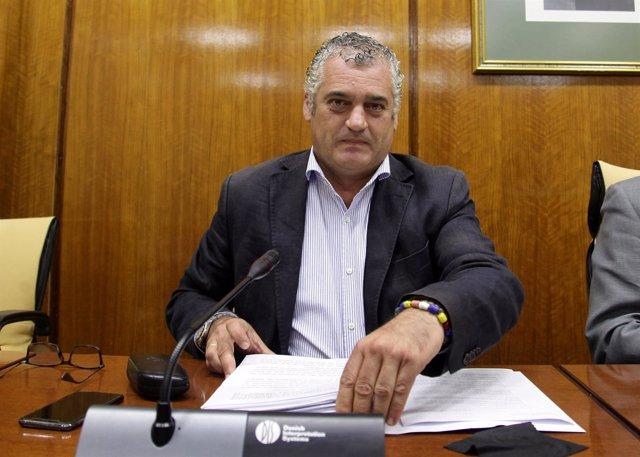 El consejero de Empleo, Empresa y Comercio, Javier Carnero, en comisión