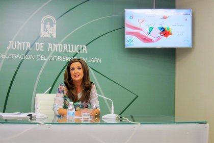 Cerca de 130.000 escolares de enseñanzas no universitarias se incorporan a las aulas de Jaén en septiembre