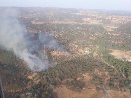 El último incendio declarado en El Ronquillo (Sevilla) afectó a nueve hectáreas de arbolado y matorral
