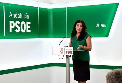 """PSOE-A valora compromiso del Gobierno y """"disposición"""" de ccaa para acogida de Menas y pide al PP """"responsabilidad"""""""