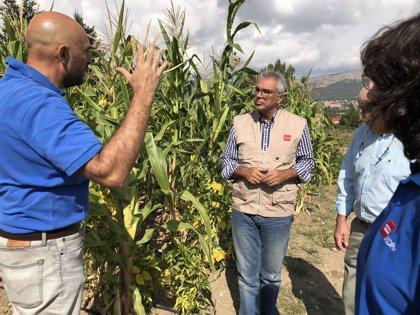 La Comunidad trabaja para mantener las tradiciones agrícolas y la inserción laboral en el sector