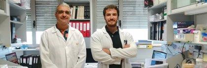 Descubren que un gen pretumoral puede convertirse en agente antitumoral según su localización