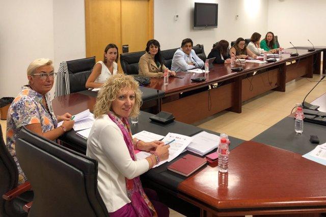 Reunión del Consejo General del ICASS