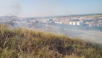 """Convocan para este viernes un """"riego simbólico"""" de los árboles afectados por los incendios del Carambolo"""