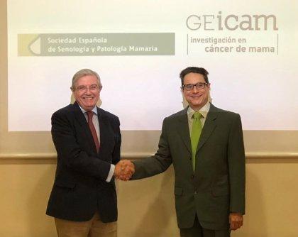 GEICAM y SESPM mejorarán la formación de profesionales sanitarios y facilitarán la investigación en cáncer de mama