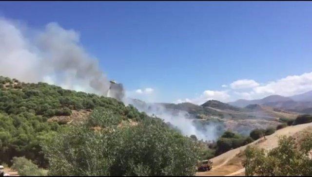 Incendio en el Cerro de San Miguel
