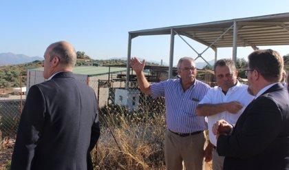 La Junta aboga por reforzar el equilibrio en la cadena alimentaria para aportar valor añadido al sector olivarero