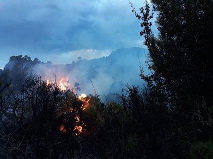 Declarado un incendio forestal en un paraje de Albuñuelas (Granada)
