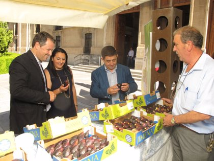La marca de calidad Degusta Jaén atrae a 174 empresas y más de 2.750 productos en sus cinco años de vida