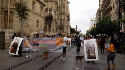 Varios centenares de personas se manifiestan por una mejora del Zoosanitario de Sevilla
