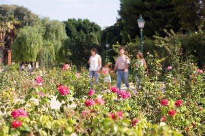 Los parques y jardines vallados de València estarán cerrados este domingo por riesgo de rachas de viento de 80 km/h