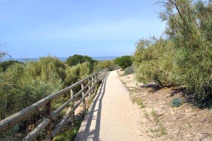 Condenados a pagar más de 1.000 euros por capturar aves no cazables en un paraje de Punta Umbría (Huelva)