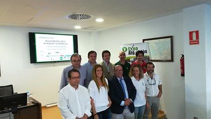 Lebrija (Sevilla) acoge la V edición de Expoalgodón el próximo 18 de septiembre