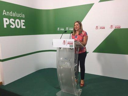"""Irene García dice que el PSOE """"no ha cambiado su posición"""" y muestra su """"compromiso en la defensa de los astilleros"""""""
