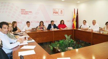 PSOE centrará el final de legislatura en leyes para ampliar los permisos de paternidad y regular los locales de juego