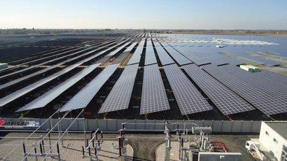 La planta solar fotovoltaica de San Roque (Cádiz) cumple una década de producción de energía verde