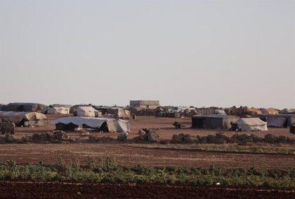 Ascienden a cerca de 30.500 desplazados a causa de los últimos bombardeos en la provincia de Idlib (Siria)