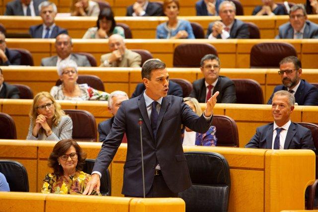Pedro Sánchez en la sessió de control al Govern en el Senat