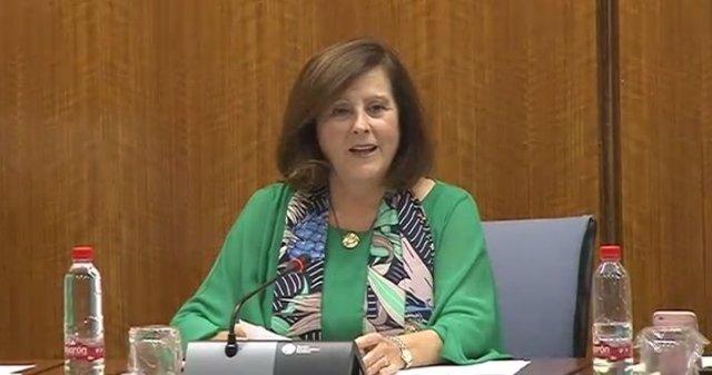 María José Sánchez Rubio en comisión parlamentaria
