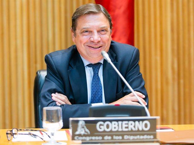 Luis Planas, ministro de Agricultura