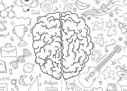 El cerebro desactiva el ruido que le molesta