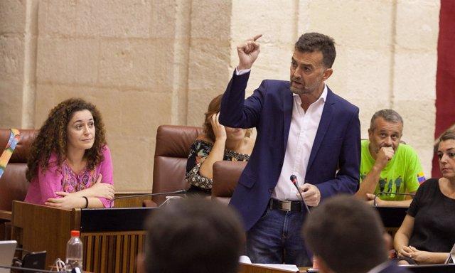 Antonio Maíllo pregunta a Susana Díaz en la sesión de control al gobierno