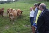 Foto: El Gobierno seguirá apostando por la mejora genética de las ganaderías