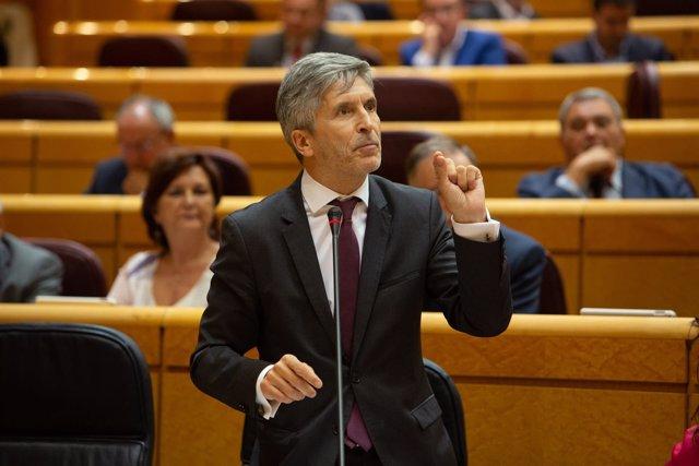 El ministro del Interior Fernando Grande- Marlaska en el Senado