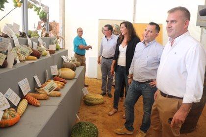 López (PP-A) visita la feria de Bollullos y destaca la actividad agrícola de la localidad