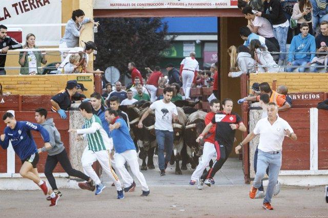 Imagen del cuarto encierro de las fiestas de Guadalajara