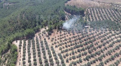 Declarado un incendio forestal en un paraje de Pozo Alcón (Jaén)