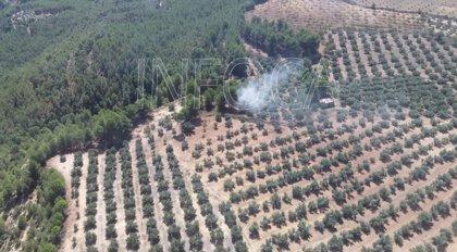 Controlado el incendio forestal de Cuevas del Campo (Granada), limítrofe con Pozo Alcón (Jaén)