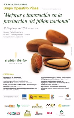 Cartel de la jornada sobre la producción de piñón. 16-9-2018