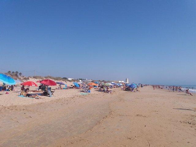 Playa de El Palmar, en Cádiz