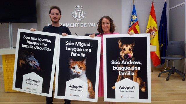 Segunda campaña de adopción de animales impulsada por el Ayuntamiento