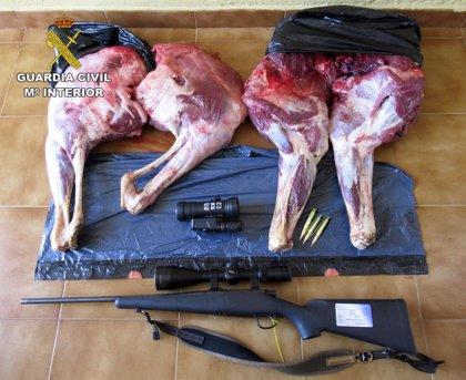 Detenidas tres personas por caza furtiva de un ciervo cerca del Parque Natural de Cabañeros